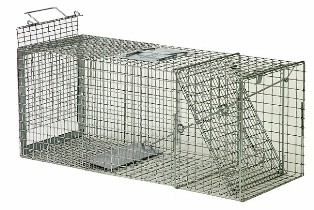 Safeguard® Standard Rear Release Cage Trap #52818SRR